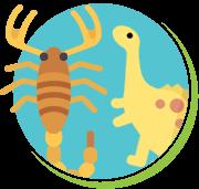 Escorpiões idade