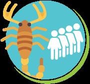 Escorpiões mortes no mundo