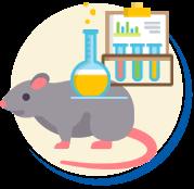 Ratos experimentos de laboratórios