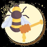 Produção do mel da abelha