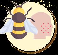 Alergias à picadas de abelhas e vespas