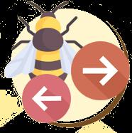 Asas das abelhas e vespas em repouso