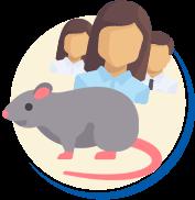 Quantidade de ratos no mundo