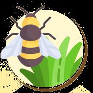 Abelhas são responsáveis pela polinização