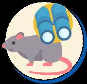 Ratos localização